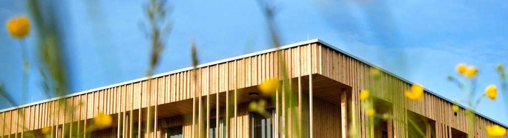 Holzbau Fassade
